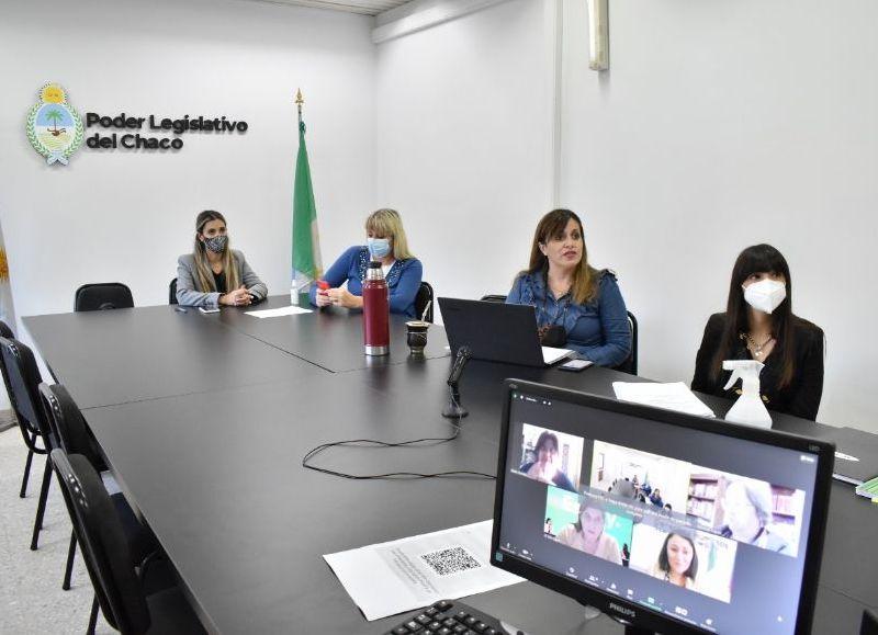 La presidenta de la Comisión de Género, Diversidad, Familia y NNA se reunió con la secretaria de Derechos Humanos y Géneros para evaluar la posibilidad de actualizar el decreto 85 del año 2020.