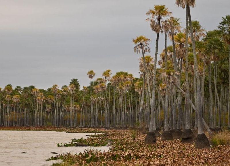 El objetivo es proteger las cinco mil hectáreas e impulsar el desarrollo turístico sostenible y amigable con el ambiente.